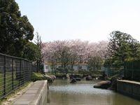 IMG_0019大師公園_1