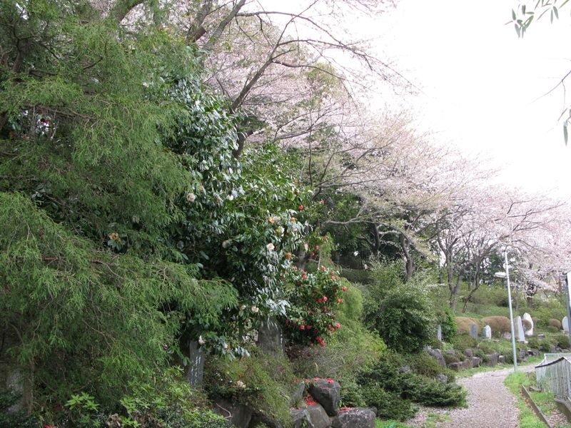 IMG_0046高石神社_1