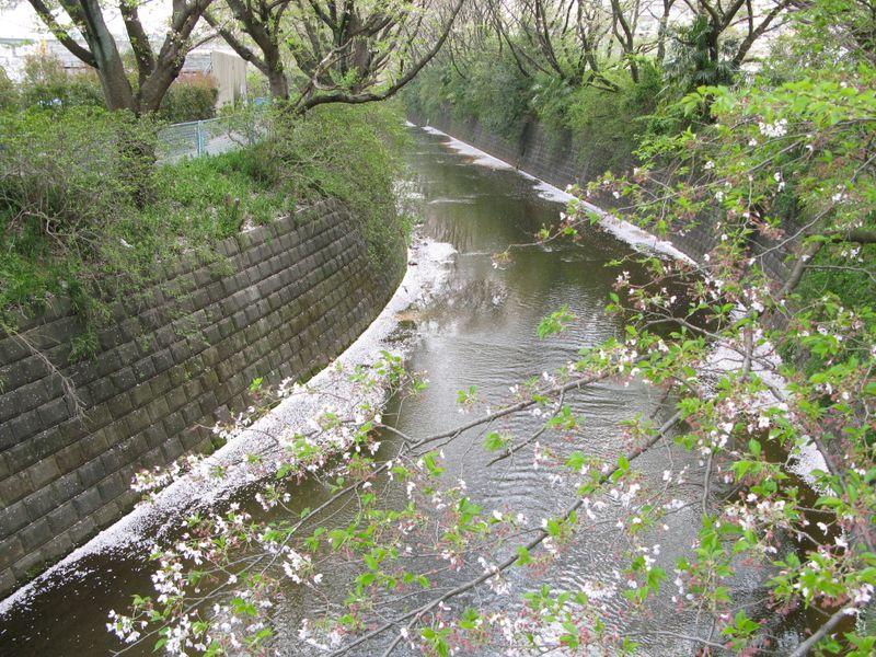 IMG_0021麻生川共和橋_1