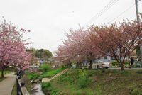 平瀬川042001