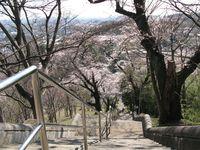 IMG_0005生田浄水場配水池・220段の階段_1