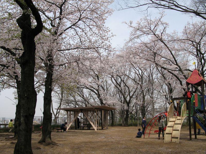 IMG_0058加瀬山・夢見ケ先公園・動物園_1