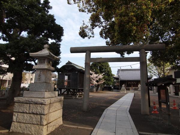 神社桜20120413_02r