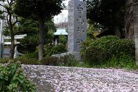 041506白山神社境内