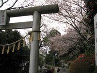 IMG_0050高石神社_1