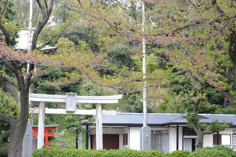 042103白山神社定点
