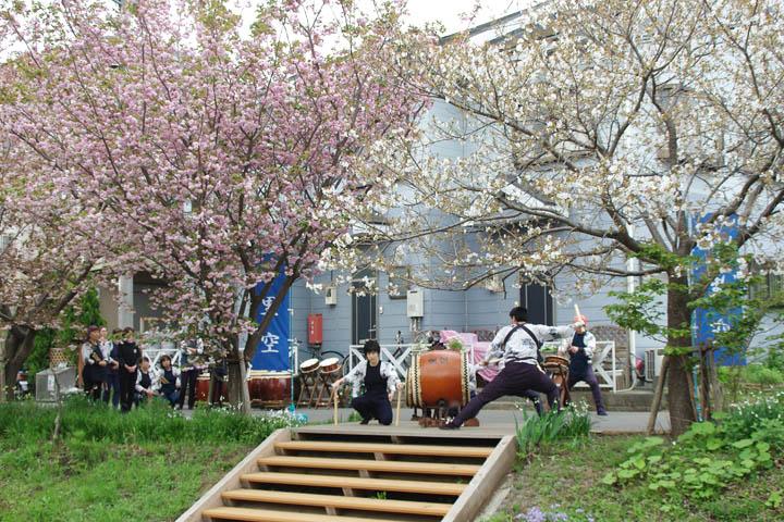 桜祭り07