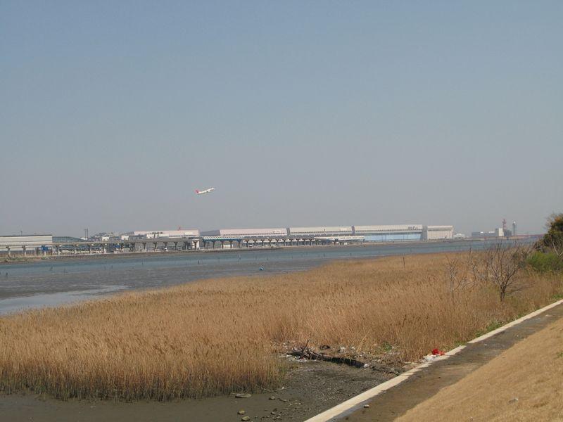 IMG_0079多摩川緑地_1