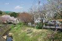 平瀬川041201