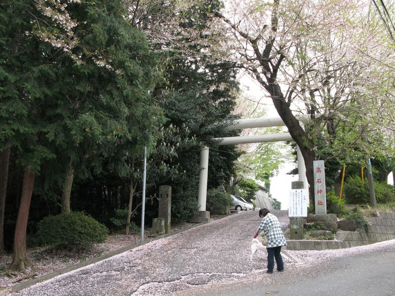 IMG_0045高石神社_1