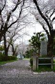 20130330白山神社03