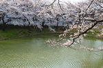 20130324籠口ノ池05