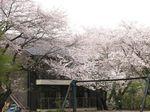 20130401黒川青少年野外活動センター02