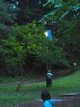 20140601takatushiminnomori_hotaru03