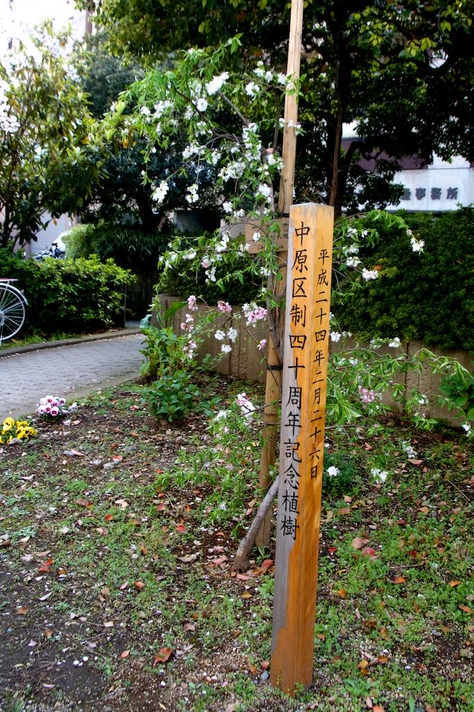 140409nakaharakuyakusyo  03