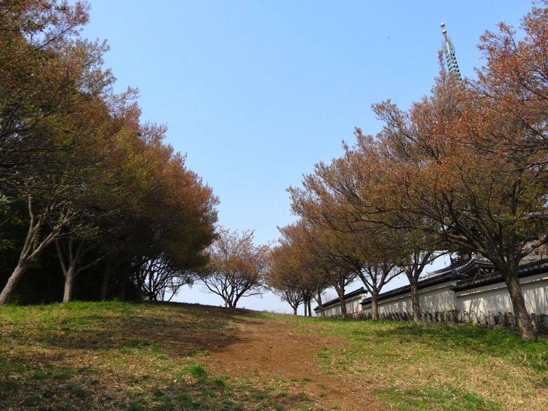 20140410korinji_kohigan01