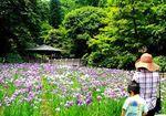20140609ikutaryokuchi_syobu01