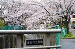 20140406asao_asaonigoubashi04
