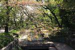 20140415nikaryo_syukugawara01