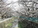 IMG_0553麻生川橋 (1024x768)