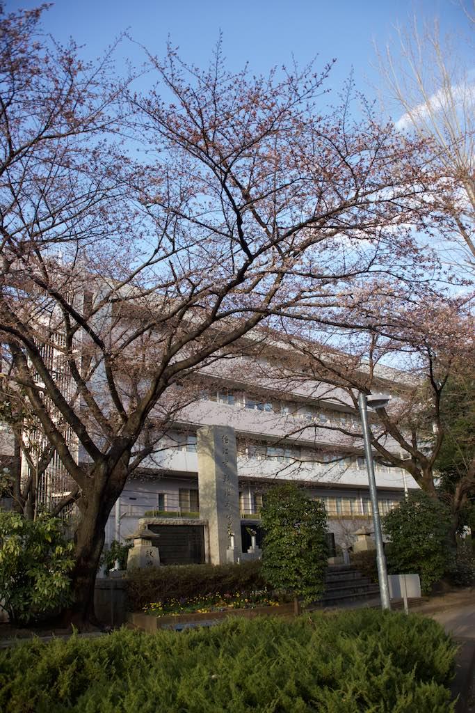 150325nishigawara 14