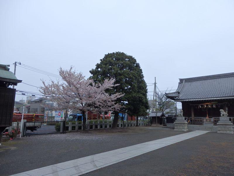 20150406_03r