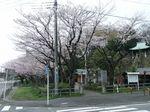 160403白山神社