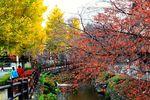 20141128nikaryo_nahanoshima-konyabashi03