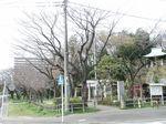 160325白山神社