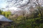 DSC_0228.jpg浄慶寺5