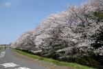 多摩川001