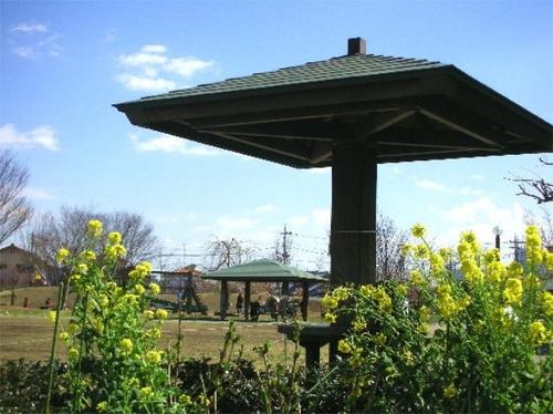 狛江・トンボ池公園の春04
