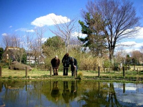 狛江・トンボ池公園の春05